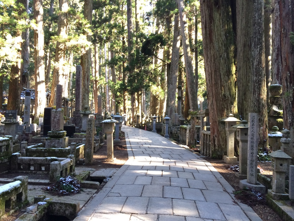 You may never have heard of Mount Koya, and after going, you will never forget it.