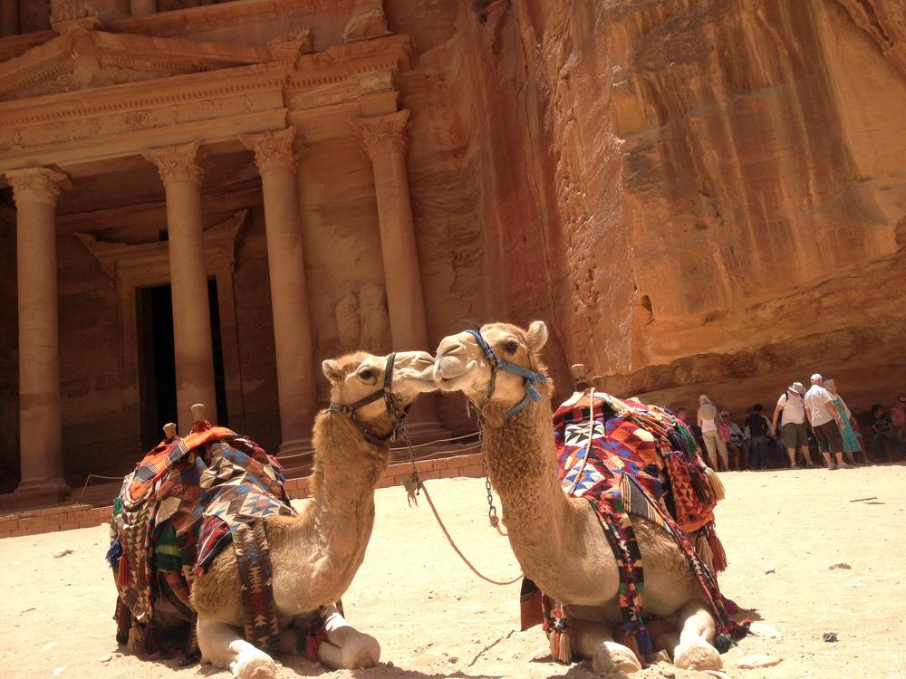 Gay Petra
