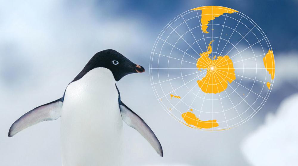 Copy of Gay Antarctica