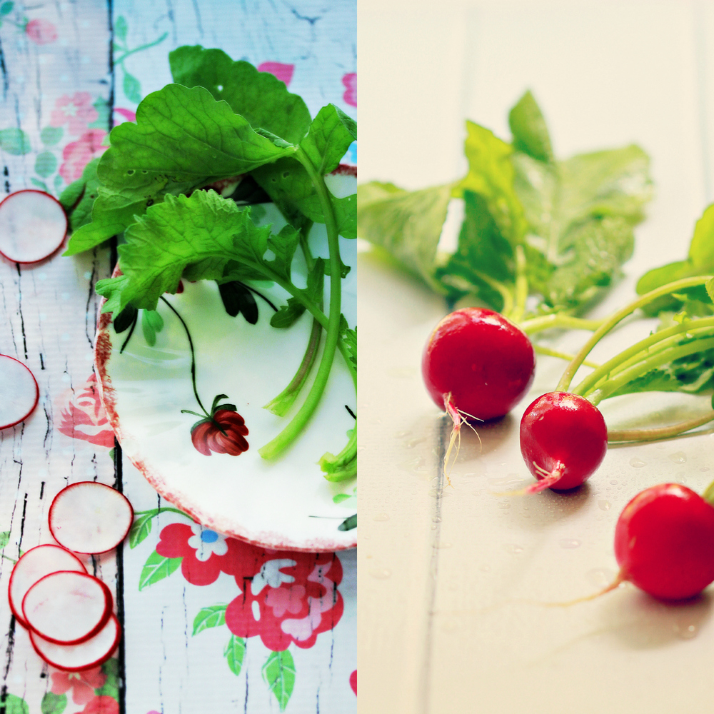 Simple Radishes by Dena T Bray