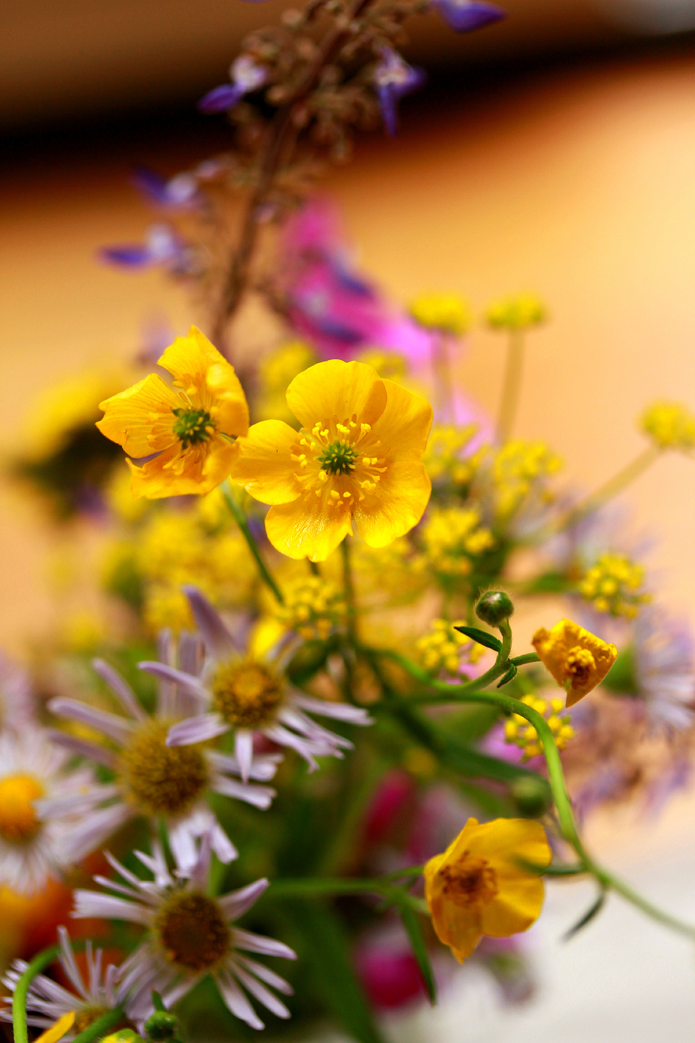 Wildflowers with Buttercup by Dena T Bray