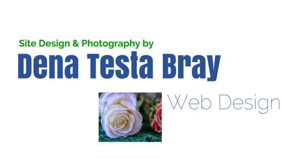 Dena Testa Bray Web Design