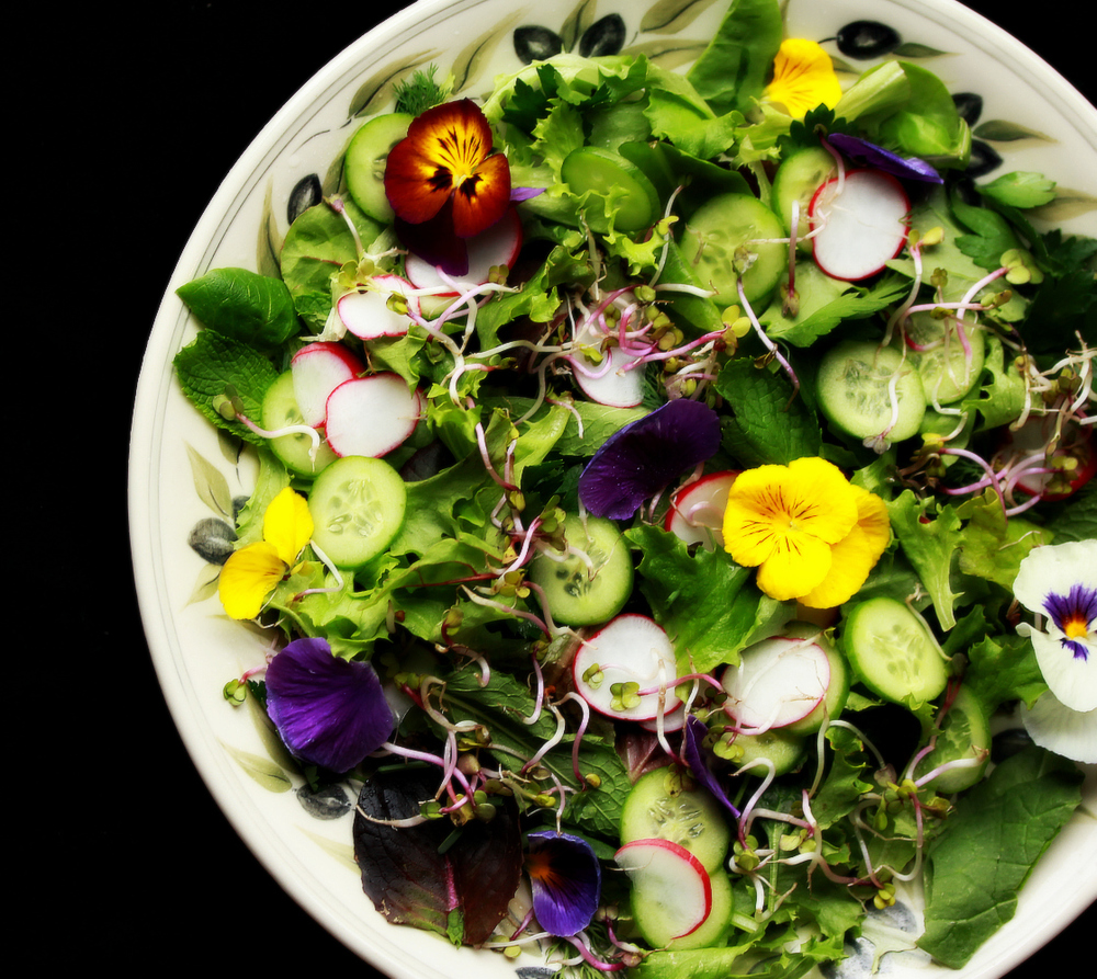 ©Persian Spring Salad by Dena T Bray