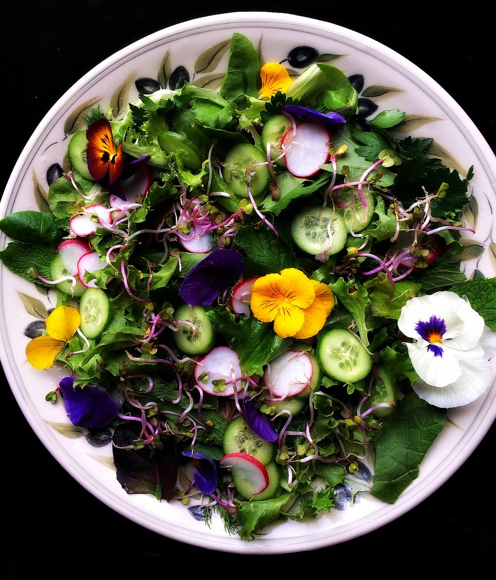 Persian Spring Salad
