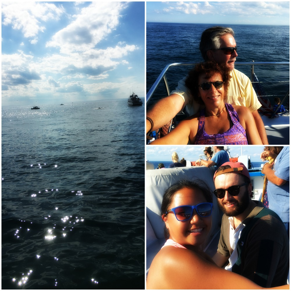 Whale Watching off the coast of New Hampshire.