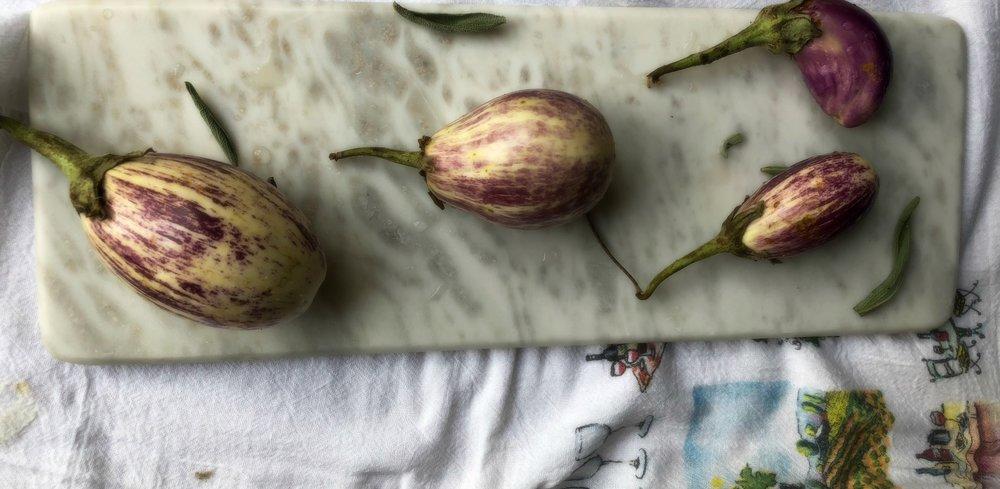 ©Four Eggplants by Dena T Bray.jpg
