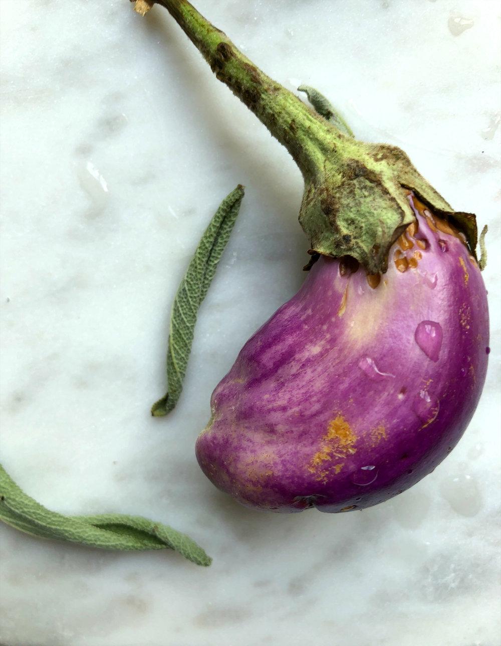 ©Little Eggplant Upclose.jpg