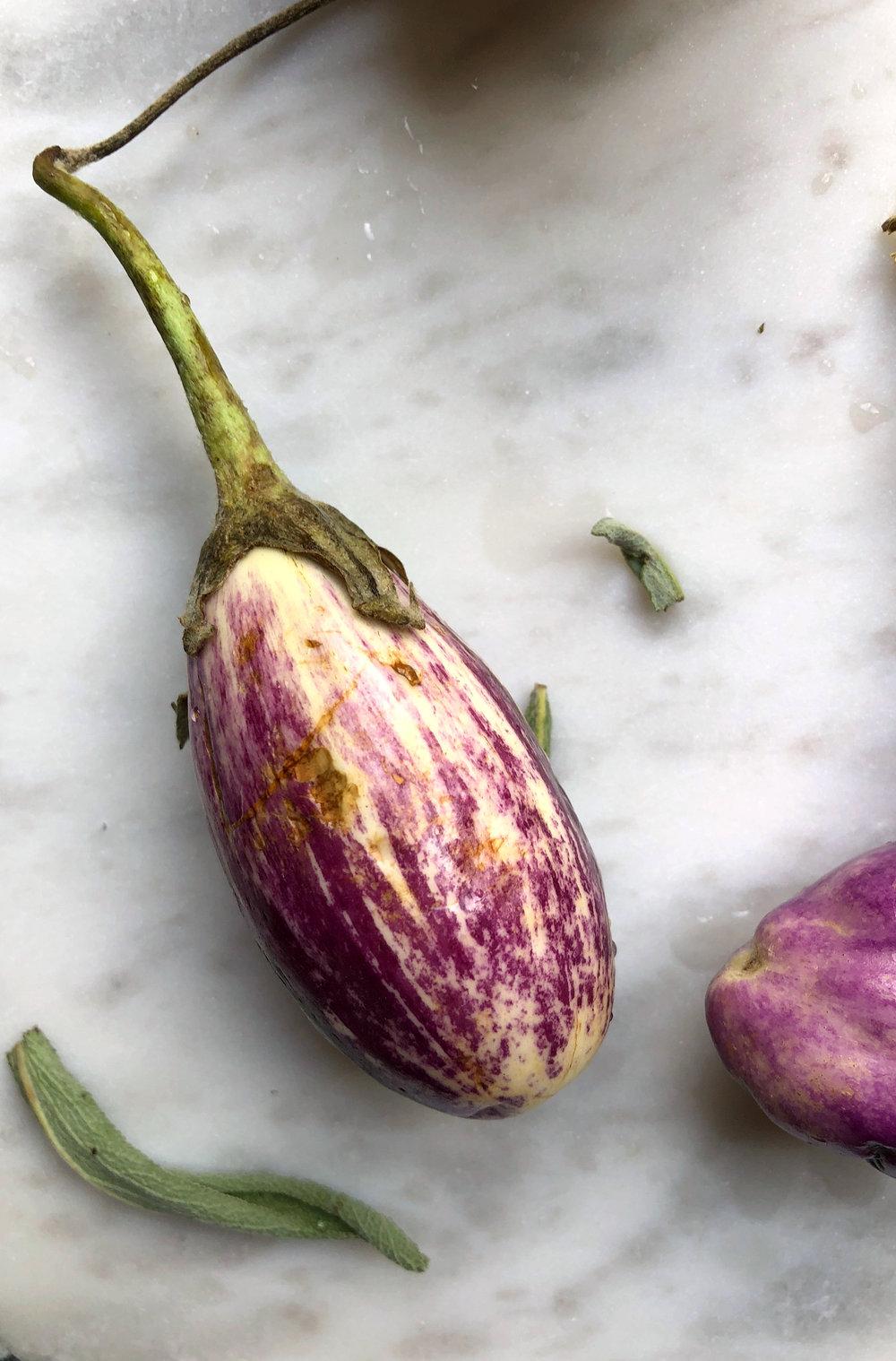 ©Small Eggplant by Dena T Bray.jpg