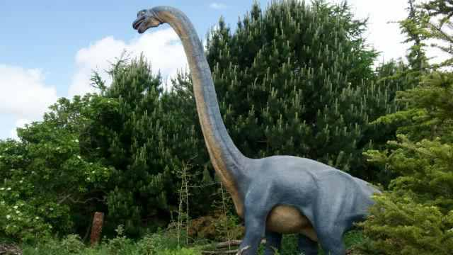 Zoorassic Park   Who doesn't ike Dinosaurs right? See the likes of moving Tyrannosaurus Rex, Brachiosaurus and Edmontonia (sounds the least threatening of them all), at ZSL Zoo. There's even a chance for a sleepover!