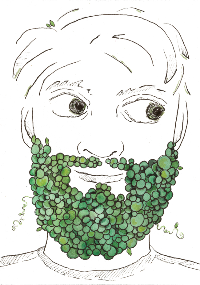 peas_beard_website.jpg