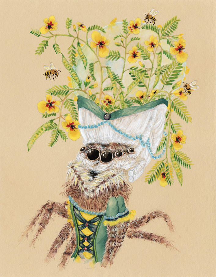 """Jumping Spider with Partridge Peas and a Water Droplet"", 2018, watercolor and gouache on tinted watercolor paper, 11"" x 14"""