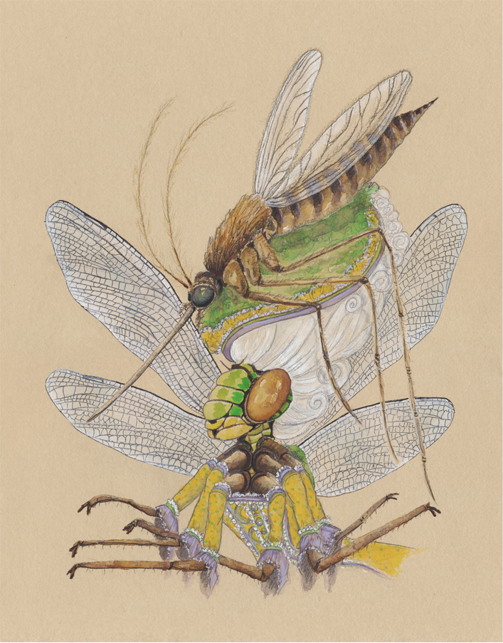 """""""The Dragonfly with a Mosquito Hat"""", 2018, watercolor and gouache on tinted watercolor paper, 11"""" x 14"""""""