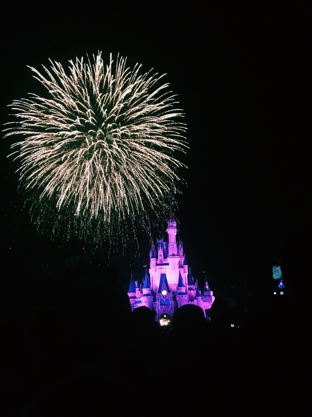 We watched Wishes a couple of times throughout the week but this was on Monday, on my birthday! Not a bad way to end your birthday!