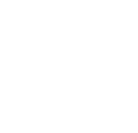 ABA Therapy BGF Performance Systems, LLC.