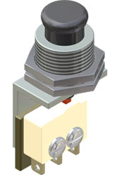 5amp Pushbutton Switch
