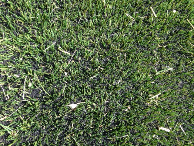 New Turf at Wedgbury 2.jpg