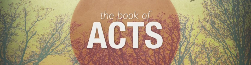 Thank you for being a part of the book of Acts Bible study.  We would like to know about your experience. Please fill out the confidential form below to help us prepare for the next class.  Thank you!