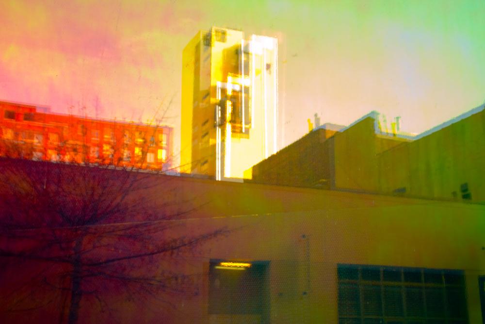 Neon Window, Chelsea