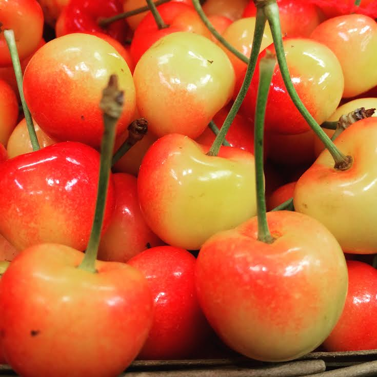 mi.rainier.cherries.jpg