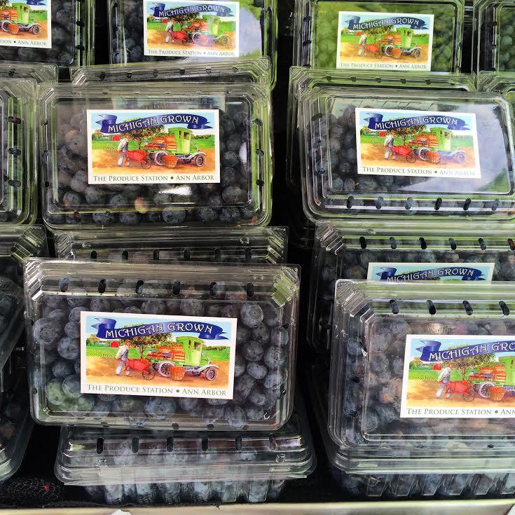 michigan.blueberries.jpg