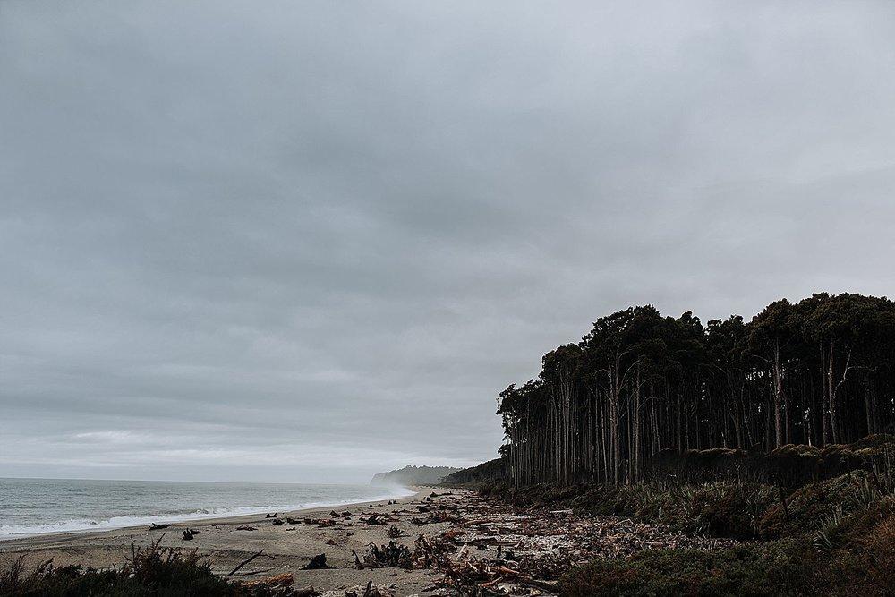 Auckland-New-Zealand-Elopement-Photographer-65.jpg