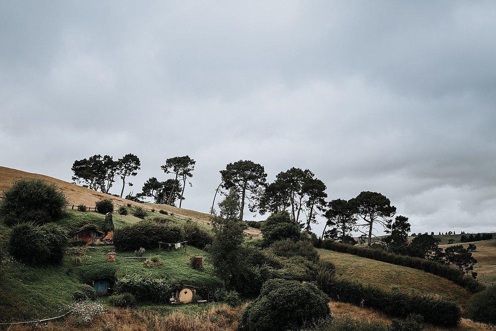 Auckland-New-Zealand-Photographer-85.jpg