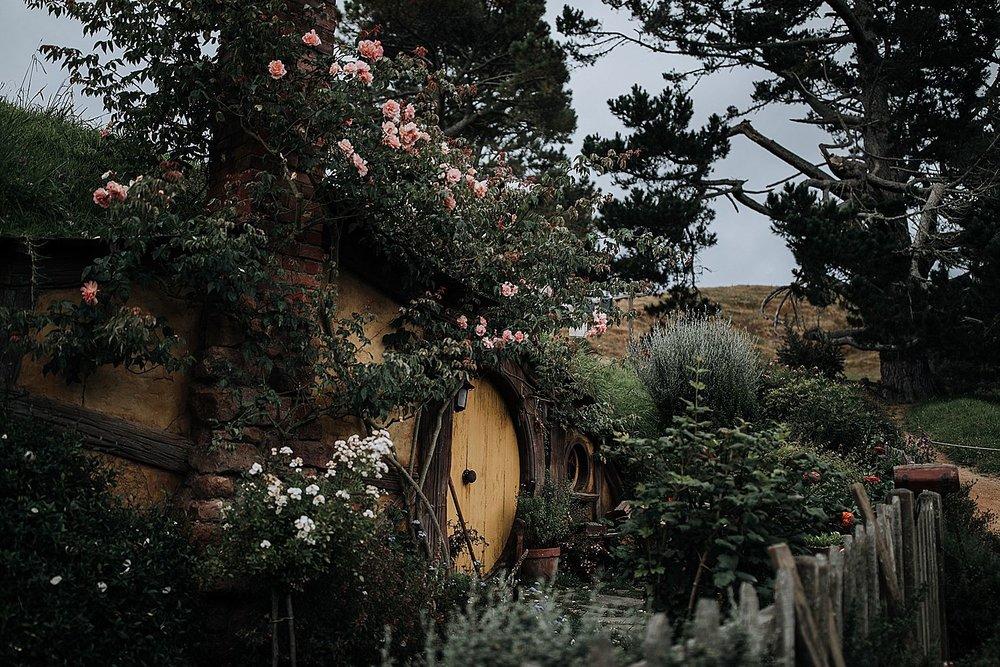 Auckland-New-Zealand-Photographer-87.jpg