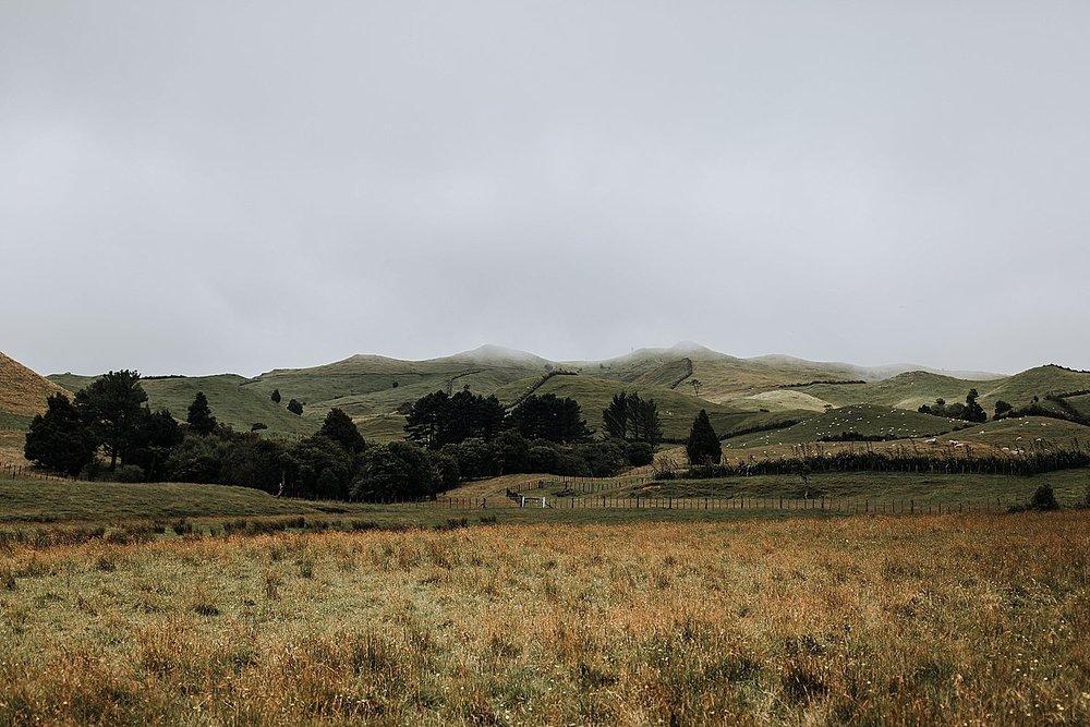 Auckland-New-Zealand-Photographer-88.jpg