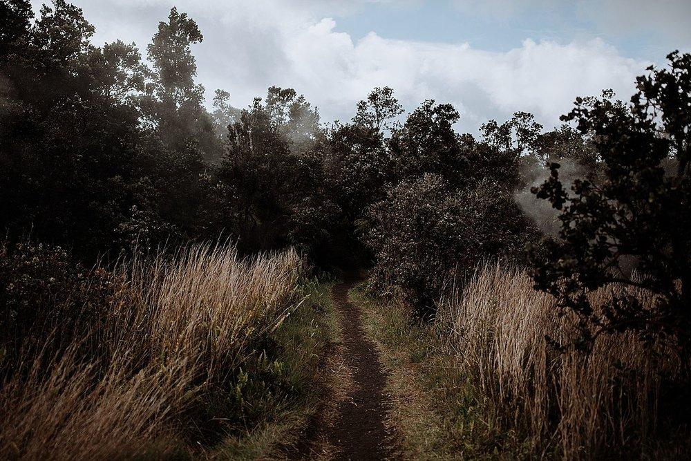 Big-Island-Elopement-Photographer-11.jpg