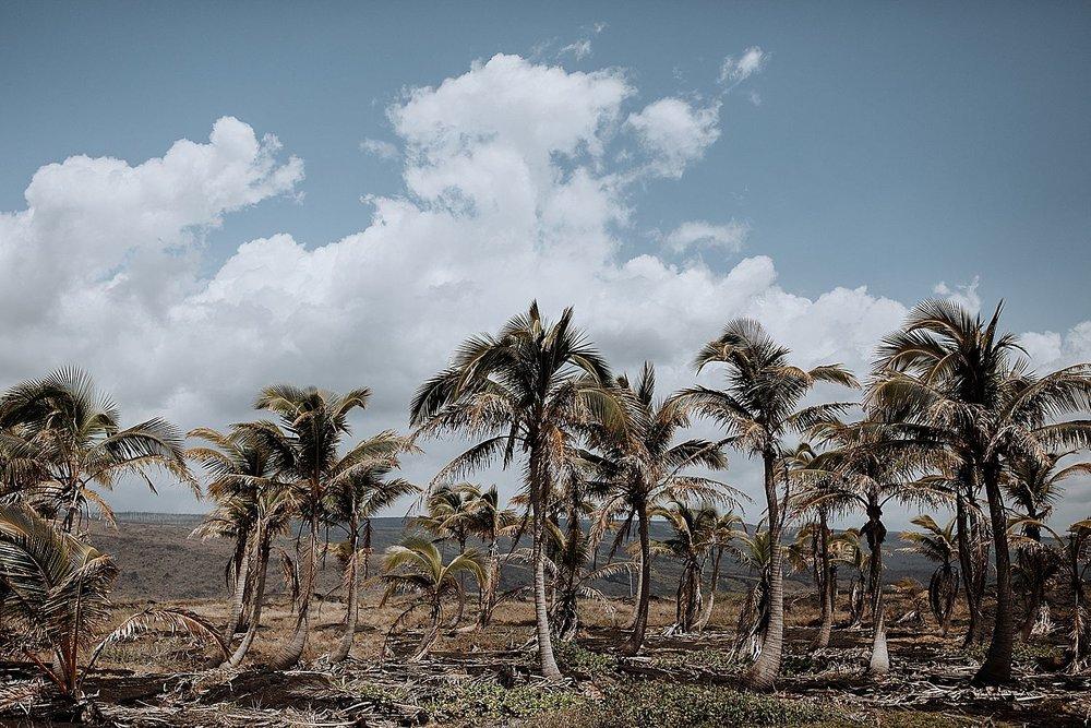 Big-Island-Elopement-Photographer-14.jpg