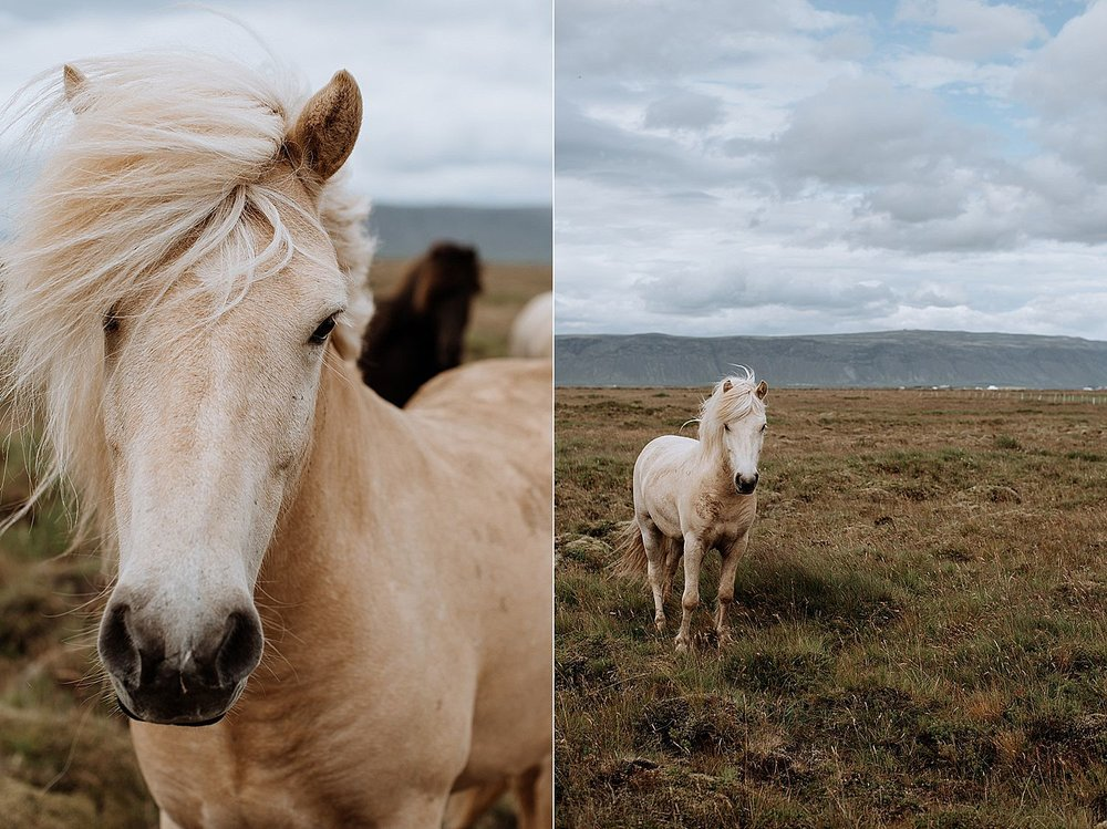 Iceland-Elopement-Photographer-15.jpg