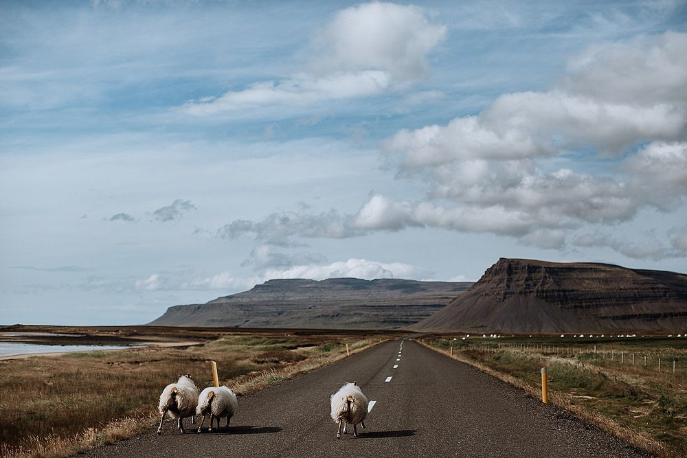 Iceland-Elopement-Photographer-20.jpg