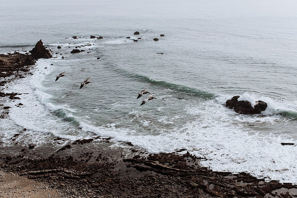 Venice-Beach-California-69.jpg