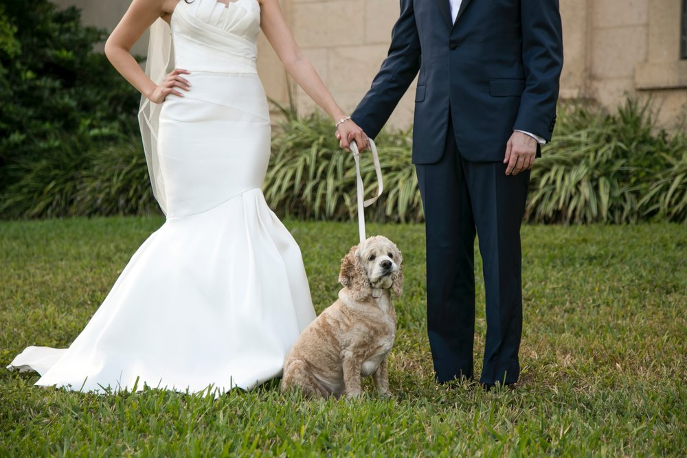 include_dog_in_wedding_tampa