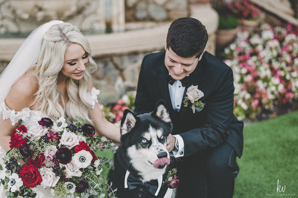 include_dog_in_wedding