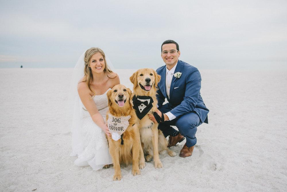 dog_in_wedding