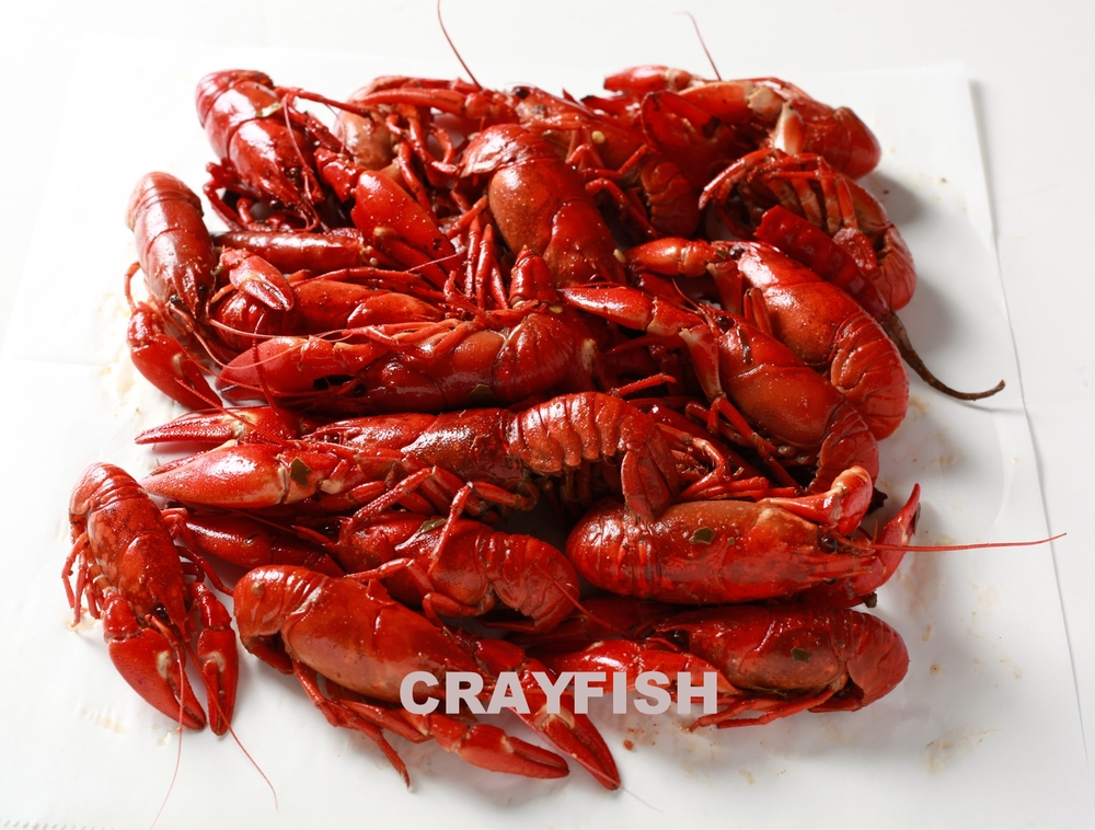 SanFranciscoFishCo,CookedCrayfish,1lb (5 of 7).jpg