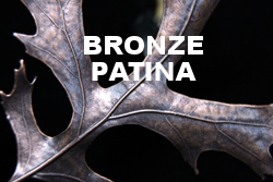 Bronze Pin Oak Web.jpg