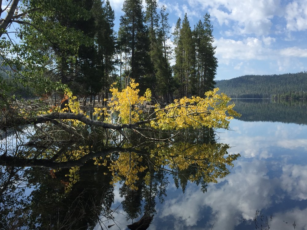 Lassen reflection 2017.JPG