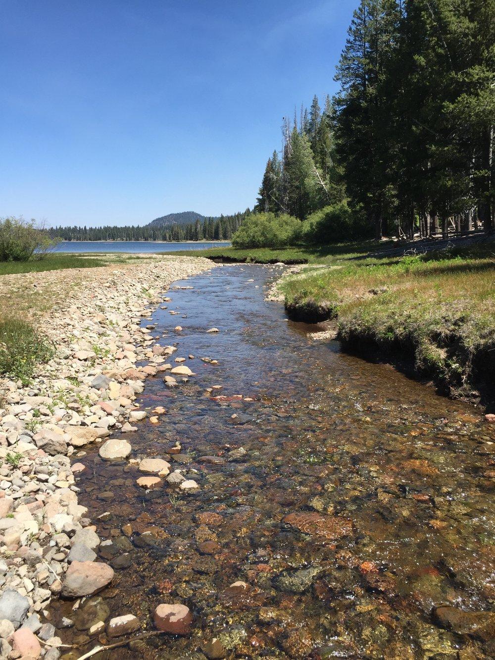 Lassen river.JPG
