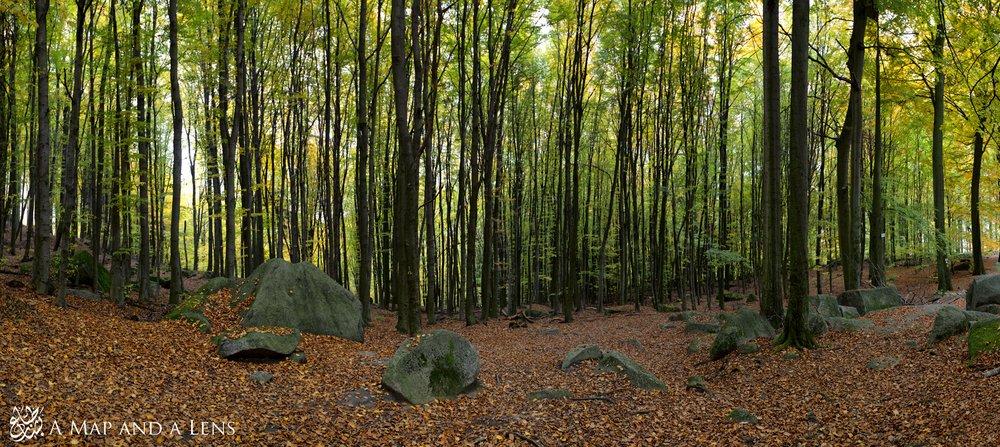 felsburg_Panorama1.jpg