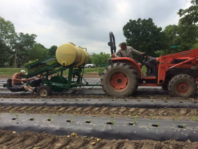 Cornman Farms  Farmer Mark Baerwolf Planting Crops To Be Harvested for Zingerman's Roadhouse