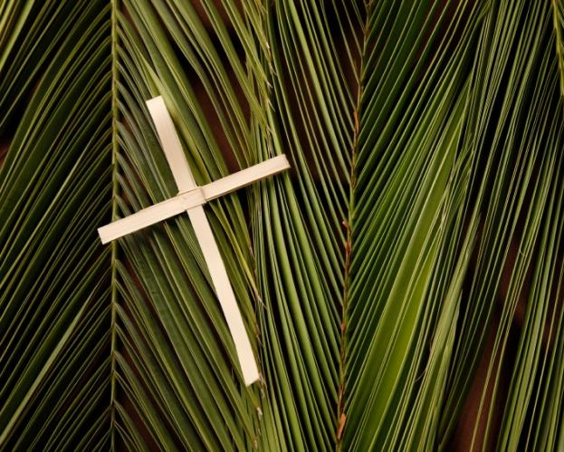 Palm+Sunday.jpg