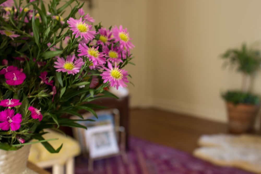 pretty-flowers-.jpg