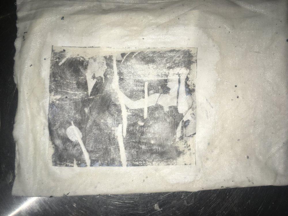 6-image-transfer-brinley-froelich