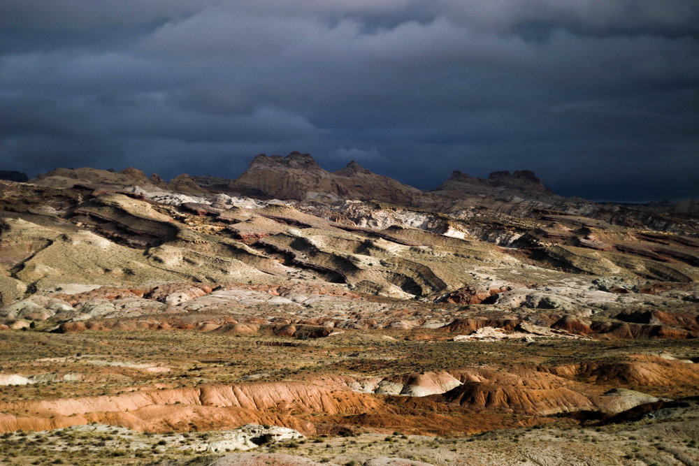 san rafael swell by jaggy mones for the boo forever collective