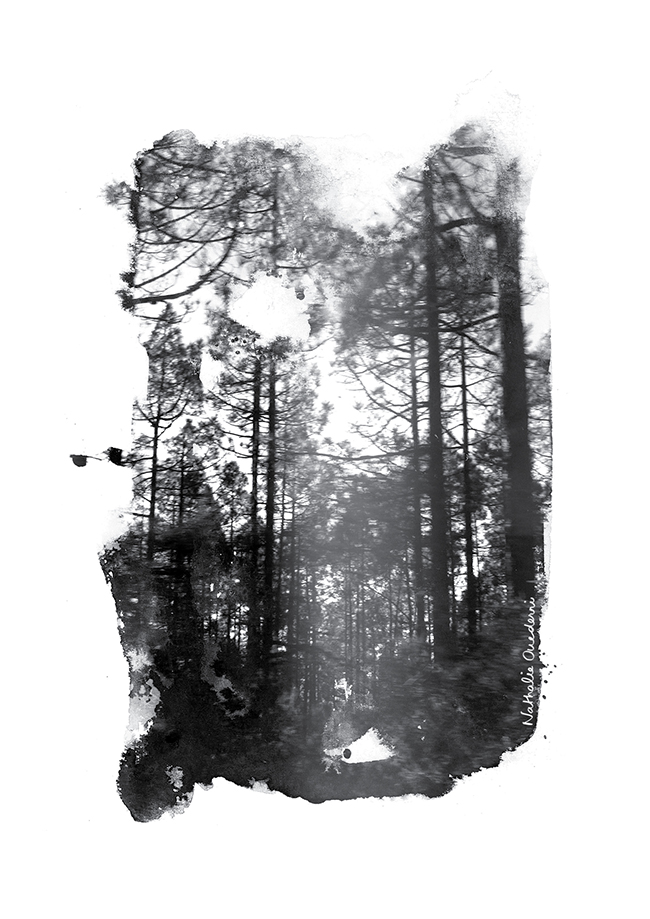 Inkscape & trees