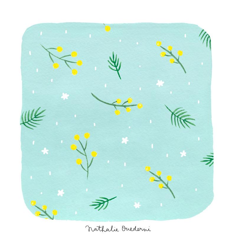 10-mimosa.jpg