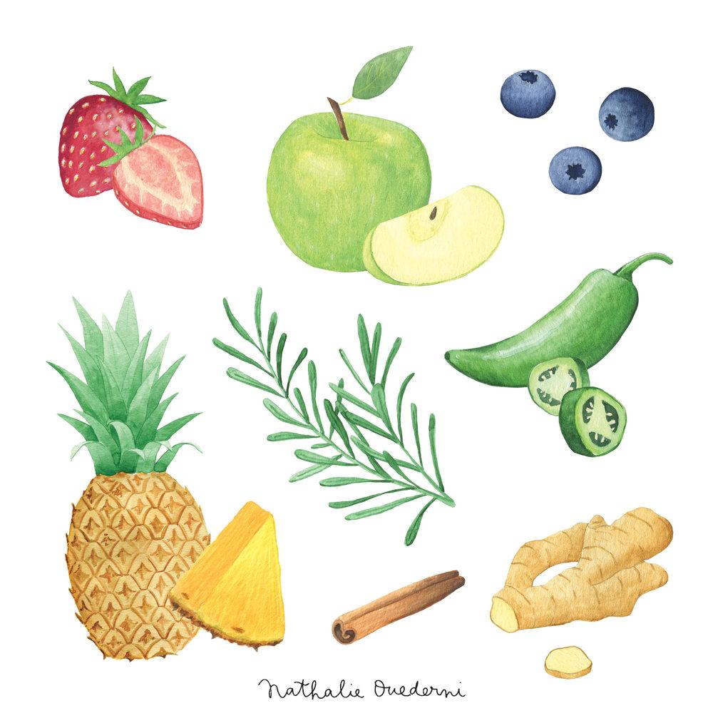 bears-fruits.jpg