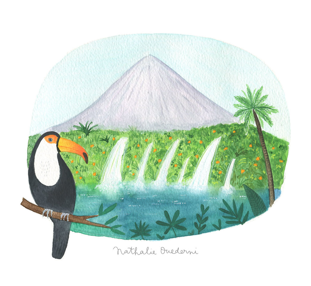 Costa Rica illustration
